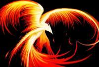 Phoenix Phoínix